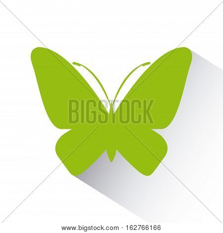 green butterfly icon over white background. colorful design. vector illustration
