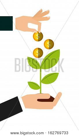 hands holding a green plant and gold coins over white background. colorful design. money and profits concept. vector illustration