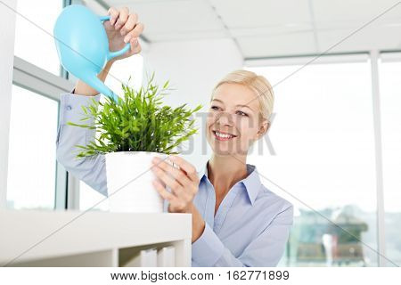 Young secretary watering green houseplant in office