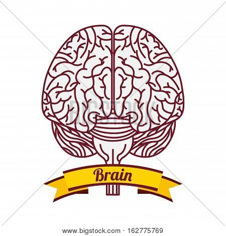 human brain icon and yellow ribbon icon over white background. colorful design. vector illustration