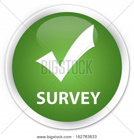 Survey (validate Icon) Premium Soft Green Round Button
