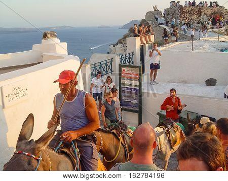 Man Driving Horses Up Steps In Santorini
