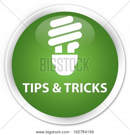 Tips And Tricks (bulb Icon) Premium Soft Green Round Button