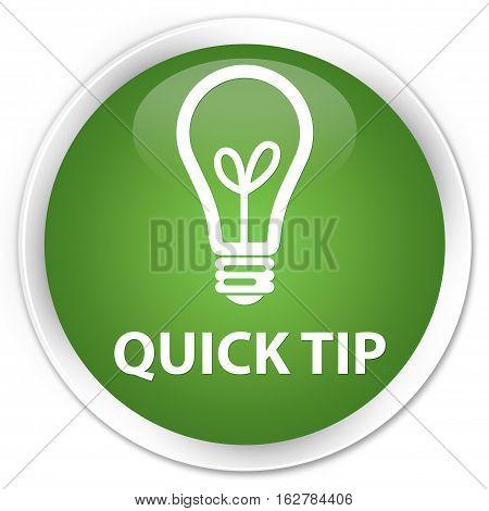 Quick Tip (bulb Icon) Premium Soft Green Round Button