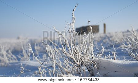 frozen grass next to highway route travel movement of auto winter