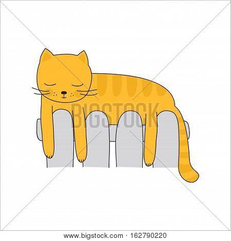 Cat on the heating radiator, image on white background
