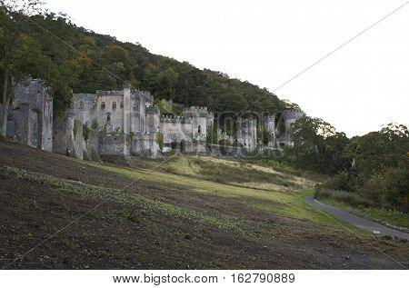 Gwrych Castle On The Hill Side Of Aeregele Uk - European Castle.