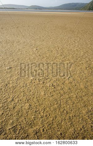 Textured Sea Sand By River Mouth