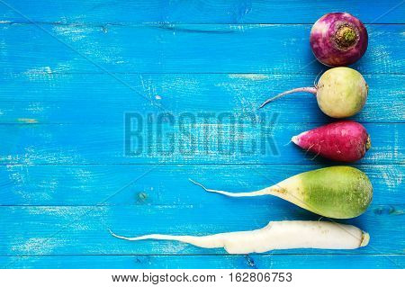 Several kinds of radish (daikon Chinese red green) on a blue (sapphire) wooden background. Useful vitamins ingredient for salads. The top view. Space for your text.