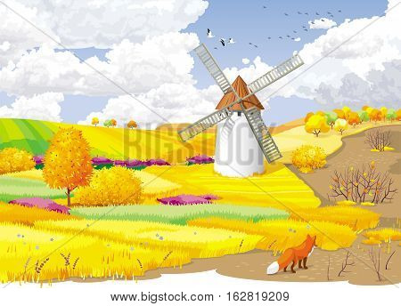 Autumn rural landscape with fields and windmill.