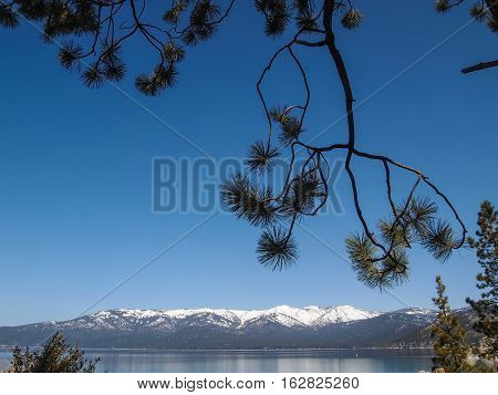 Landscape Of Lake Tahoe