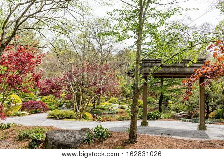 Wood Pavilion in Beautiful Public Garden with Japanese Maples