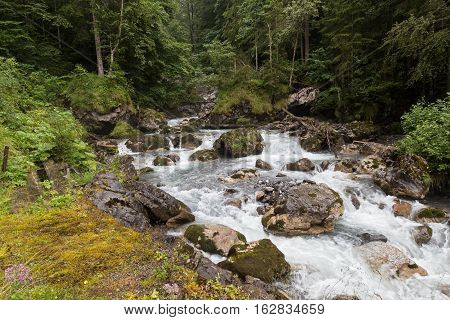 Fast mountain river flowing among mossy stones and boulders in green dense wild forest.