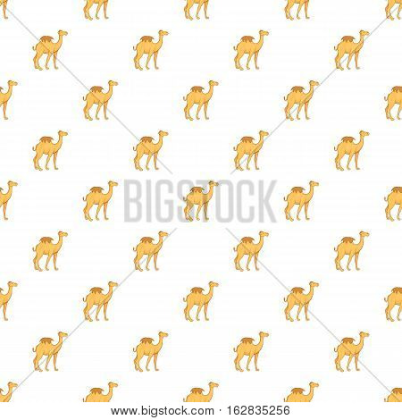 Cartoon illustration of camel vector pattern for web