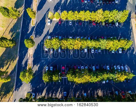Looking down over parking lot with green rows of landscaped trees with cars parked in the shade , Austin , Texas , USA