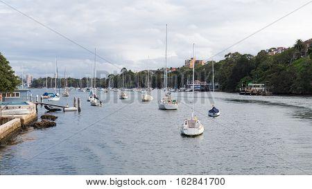 Sydney - 29 February 2016: Sydney city skyline on the banks of Sydney Harbour and the many yachts February 29 2016 Sydney Australia