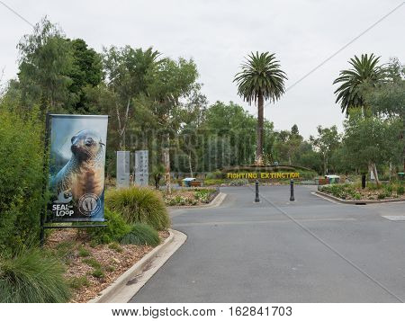 Melbourne - February 22 2016: beautiful asphalt paths in natural zoo Melurna and view of the central circular track and a lot of plants around February 22 2016 in Melbourne Australia