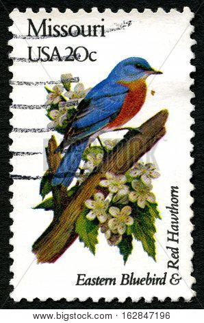 UNITED STATES OF AMERICA - CIRCA 1982: A used postage stamp from the USA celebrating the Missouri state bird and flower - the Eastern Bluebird and Red Hawthorn circa 1982.