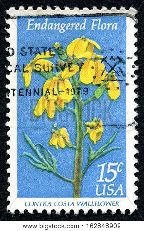 UNITED STATES OF AMERICA - CIRCA 1979: A used postage stamp from the USA with an illustration of the Contra Costa Wallflower circa 1979.