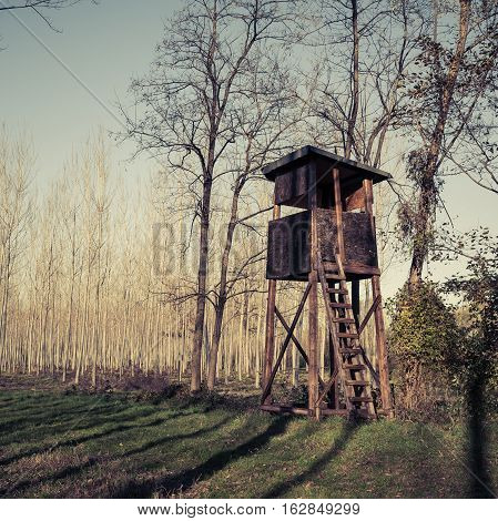 Raised hunting shed. Hunt Tower for deer in forest of poplars. Photo in vintage style.