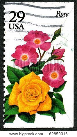 UNITED STATES OF AMERICA - CIRCA 1970: A used postage stamp from the USA depicting an illustration of the Rose flower circa 1970.