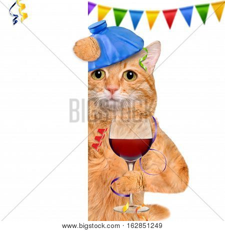 Cat with a hangover and headache is holding a glass of wine, ice bag on a head. Behind the white banner.