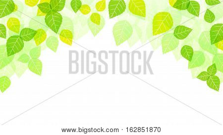 Vector Illustration of Leaves Background. Best for Backgrounds, Design Element, Nature, Season, Banner, Backdrop, concept.