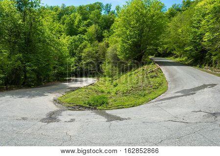 Mountain Road In Abkhazia.