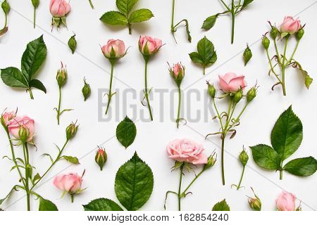 Decorative Pattern With Pink Roses, Leaves And Buds On White Background. Flat Lay, Top View