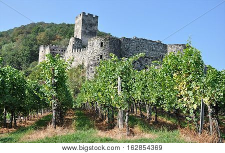 old ruins, villages Spitz, Wachau, Austria, Europe