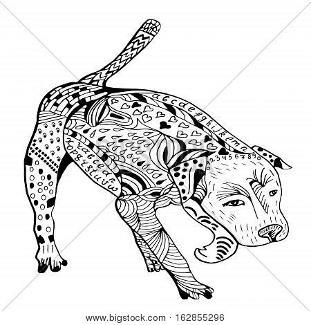 Doodle pitbull graphic with ornate pattern. Design Isolated on white.