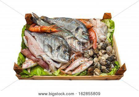 Box Of Fresh Fish On White Background.
