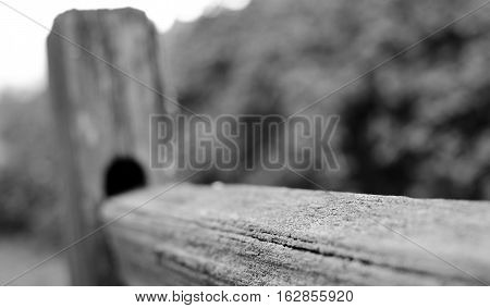Weathered Wooden Fence At Sammamish Trail