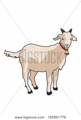 Goat milky with a bell around his neck on a white background.