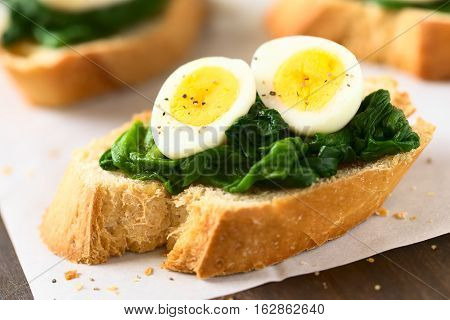 Crostini roasted bread slices with cooked spinach leaves and hard boiled quail eggs seasoned with black pepper photographed with natural light (Selective Focus Focus on the front of the egg yolks)