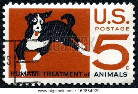 UNITED STATES OF AMERICA - CIRCA 1966: A used postage stamp from the USA depicting an illustration of a dog and promoting the humane treatment of animals circa 1966.