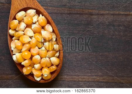 Yellow raw popcorn kernels on wooden spoon photographed overhead on dark wood with natural light (Selective Focus Focus on the top kernels)