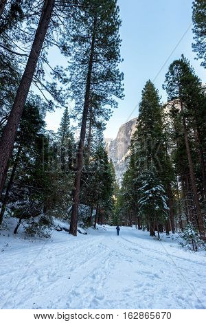 Snow covered road in Yosemite National Park with Half Dome in the background