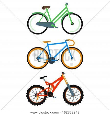 Bicycle flat style isolated on white background vector illustration. Different bike collection. Street cycle fast road transport. Sport and everyday eco friendly race tool.