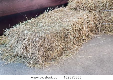 a pile of straw on field straw bales after harvest.