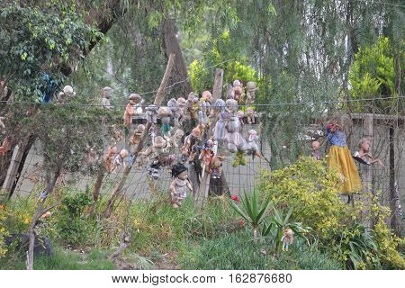 The  Island of the Dolls originally a tribute to a dead girl is now a creepy and supposable haunted tourist location in Xochimilco, Mexico