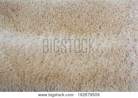 Bright fur mink. Fur texture and background.