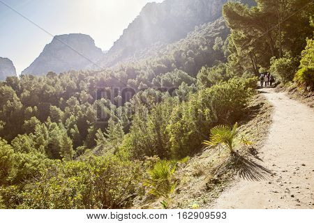 Visitors walking along the Caminito del Rey path forests Malaga Spain. Sunshine rays atmosphere