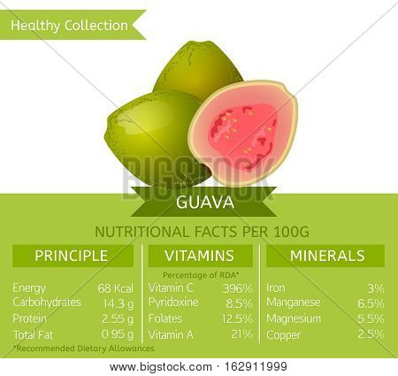 Guava health benefits. Vector illustration with useful nutritional facts. Essential vitamins and minerals in healthy food. Medical, healthcare and dietary concept.
