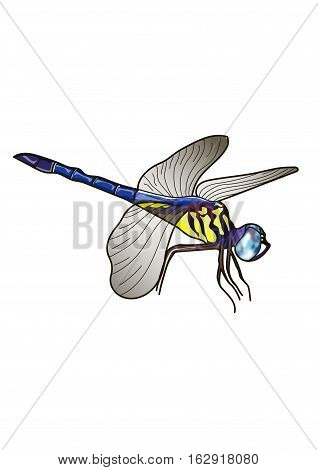 Flying dragonfly on a white background. Gray wings.