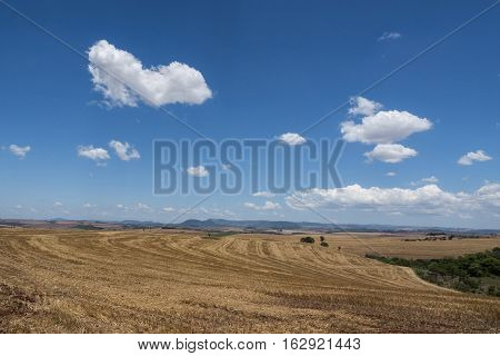 Rural scene sky clouds farm rural agriculture landscape