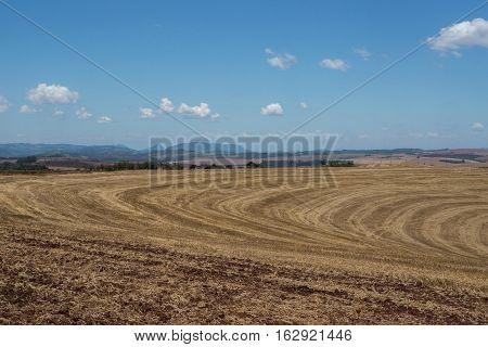 Rural scene agriculture field landscape land horizon