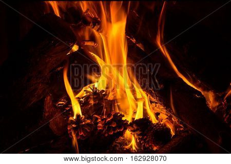 Fire. Firewood in a fireplace burns bright fire.