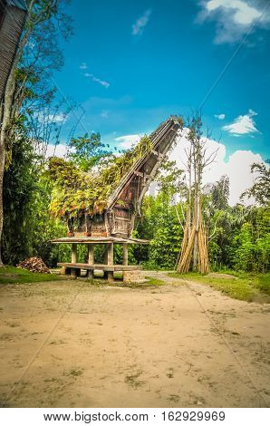 Traditional ancestral house with large saddleback roof covered with ferns standing on four pillars in Sangalla Toraja region in Sulawesi Indonesia. poster