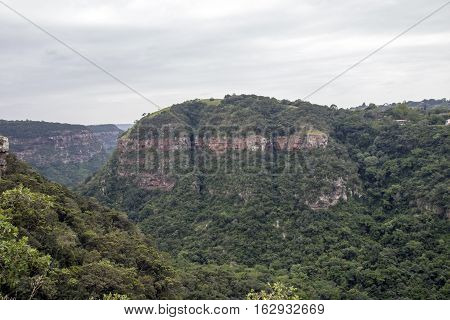 Landscape view overlooking green vegetated Kloof gorge in Durban South Africa